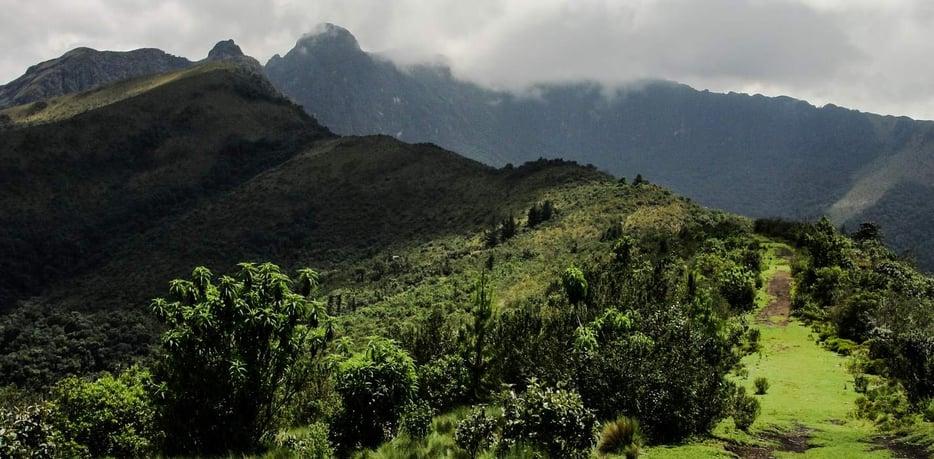 Pasochoa Montaña-1